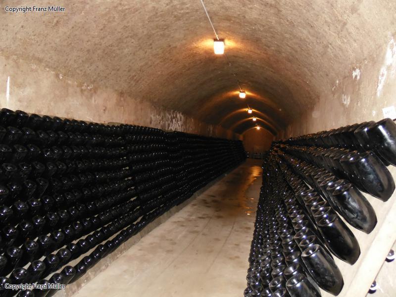 Besuch der Champagnerkellerei Baron-Daurvergne in Bouzy